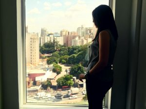 Os-melhores-locais-para-se-hospedar-em-São-Paulo-ibis-paraiso-300x225 Os melhores locais para se hospedar em São Paulo !