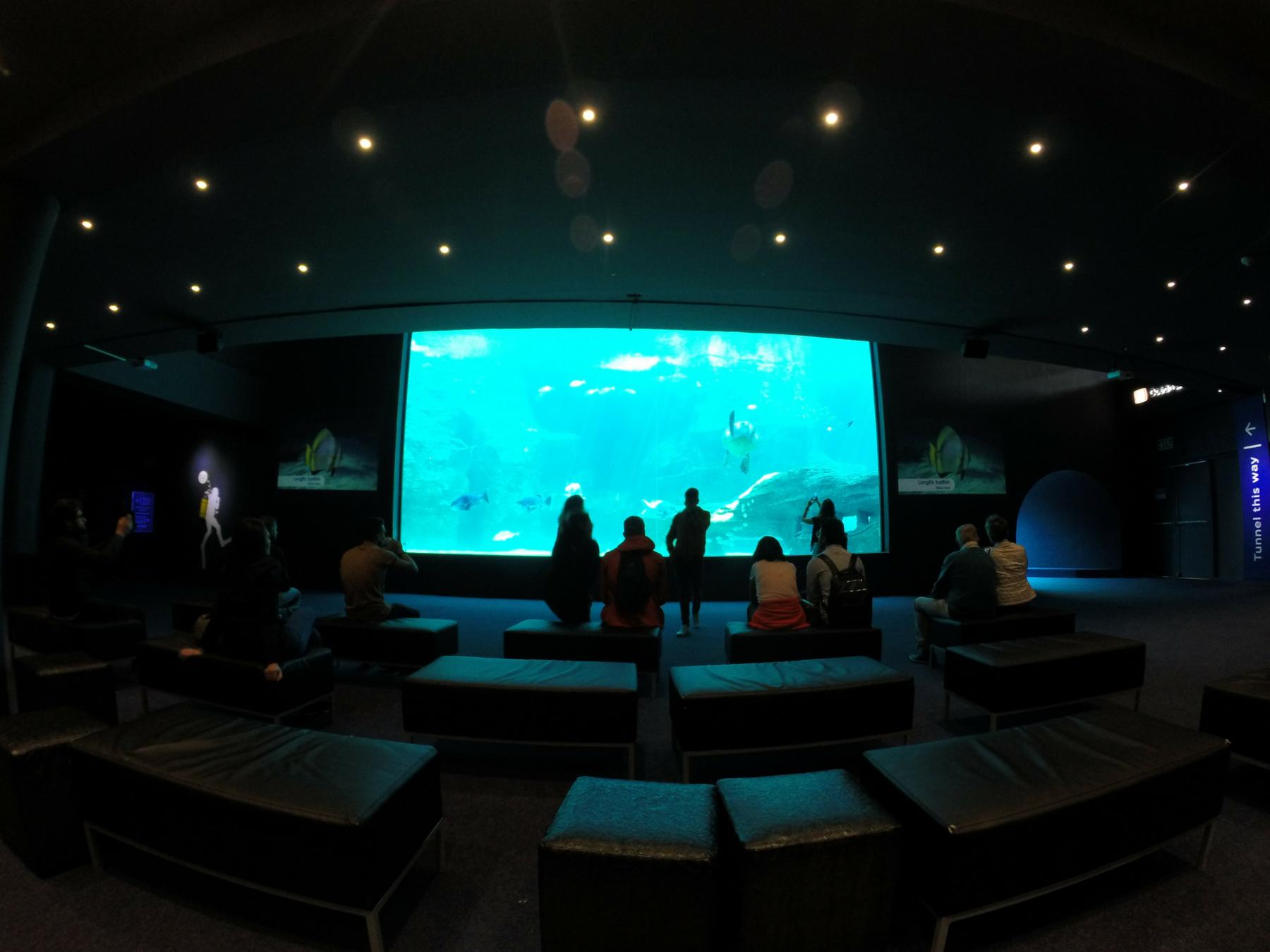Roteiro-Cidade-do-Cabo-4-a-7-dias-aquario-two-oceans Roteiro Cidade do Cabo 4 a 7 dias (Sensacional)!