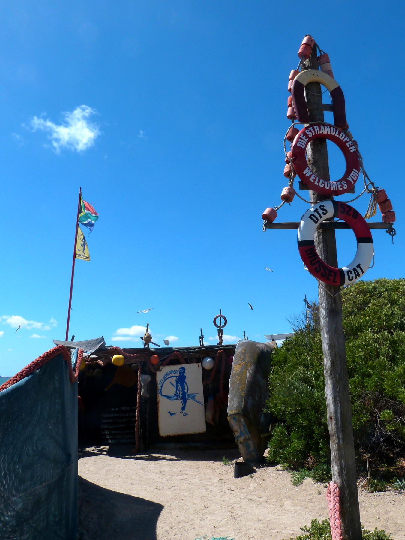 Roteiro-Cidade-do-Cabo-4-a-7-dias-die-strandloper-langbaan-praia Roteiro Cidade do Cabo 4 a 7 dias (Sensacional)!