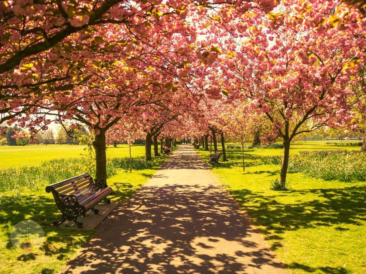 hyde-park-regent-roteiro-em-Londres-de-7-dias-economico Roteiro em Londres de 7 dias econômico!