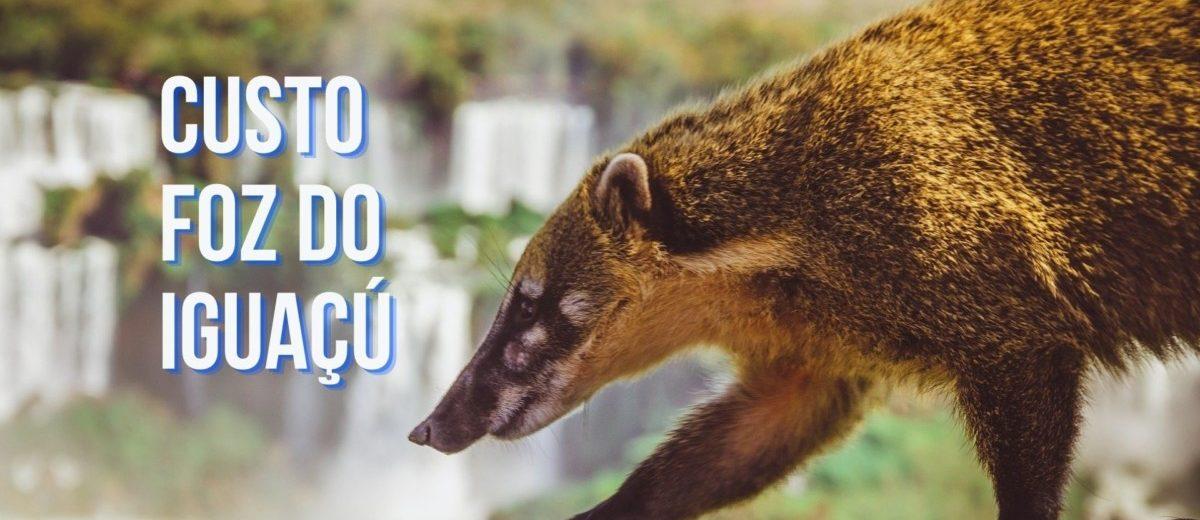quanto custa viajar para foz do iguacu