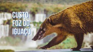 Custo da viagem Foz do Iguaçú em 5 dias de roteiro!